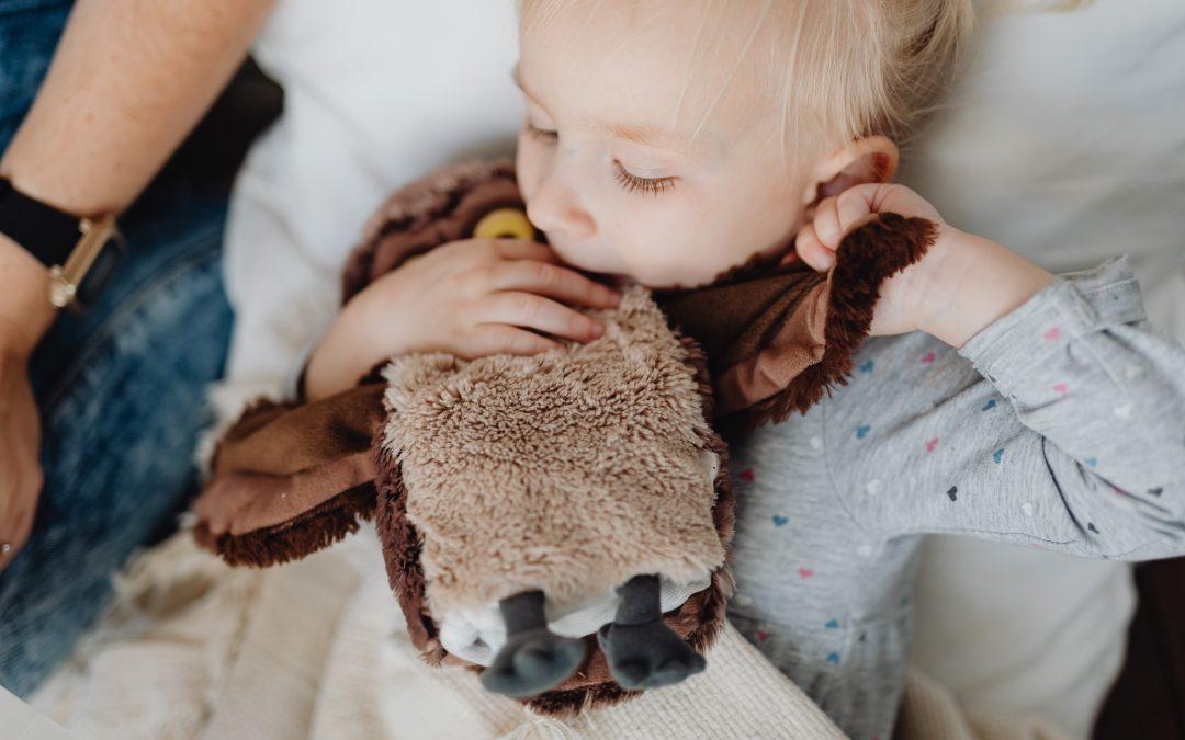 L'importance du doudou pour votre enfant 🧸